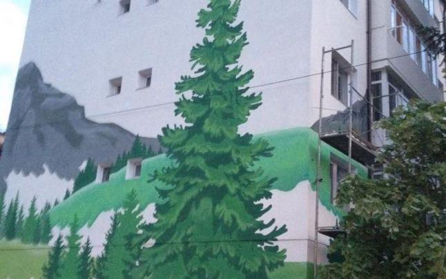 blocuri pictate in Brezoi